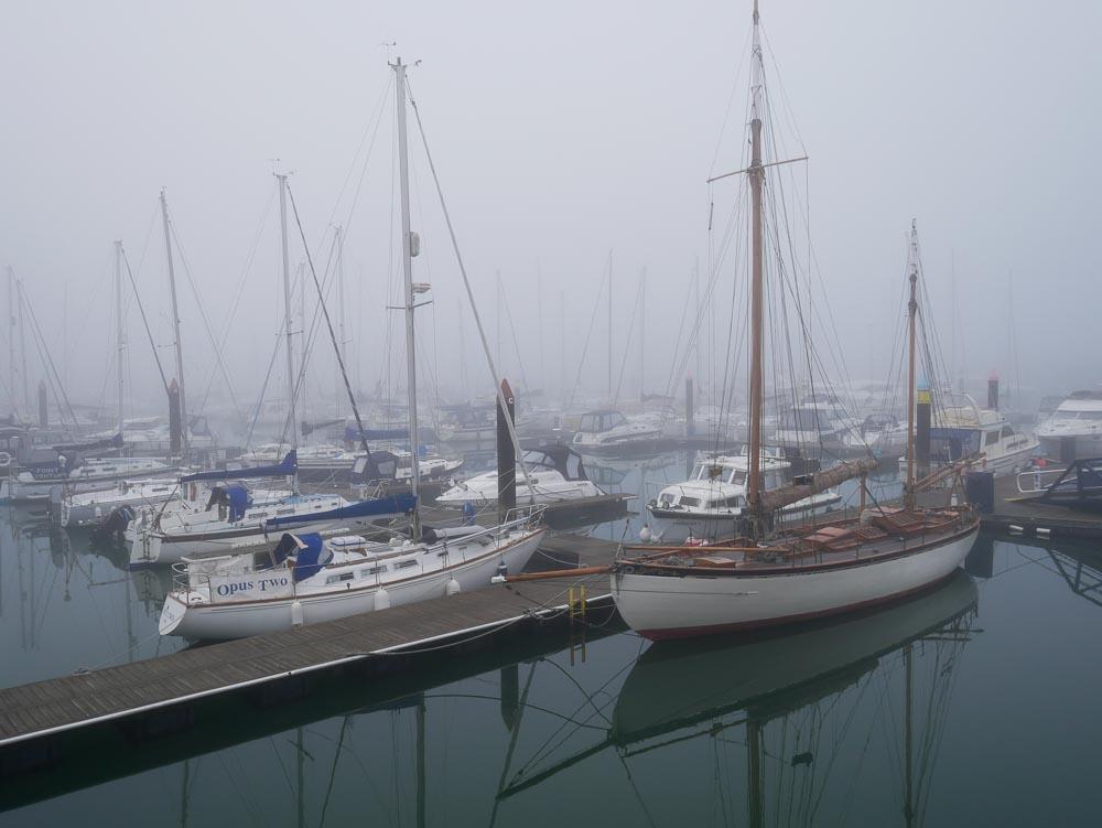 Mist on the Marina