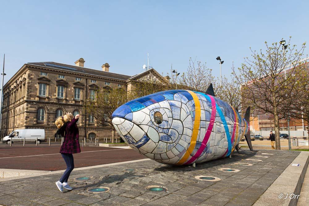 The Big Fish, Belfast