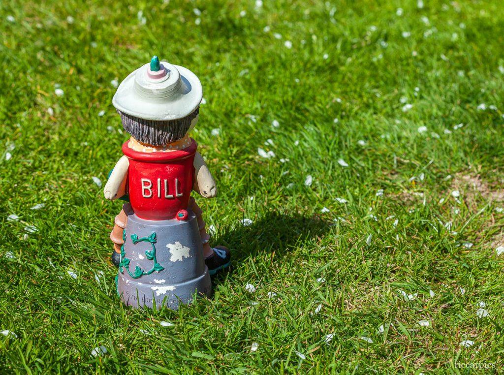Bill in the garden