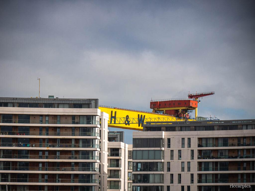 Shipyard crane behind apartment blocks, Belfast, Northern Ireland