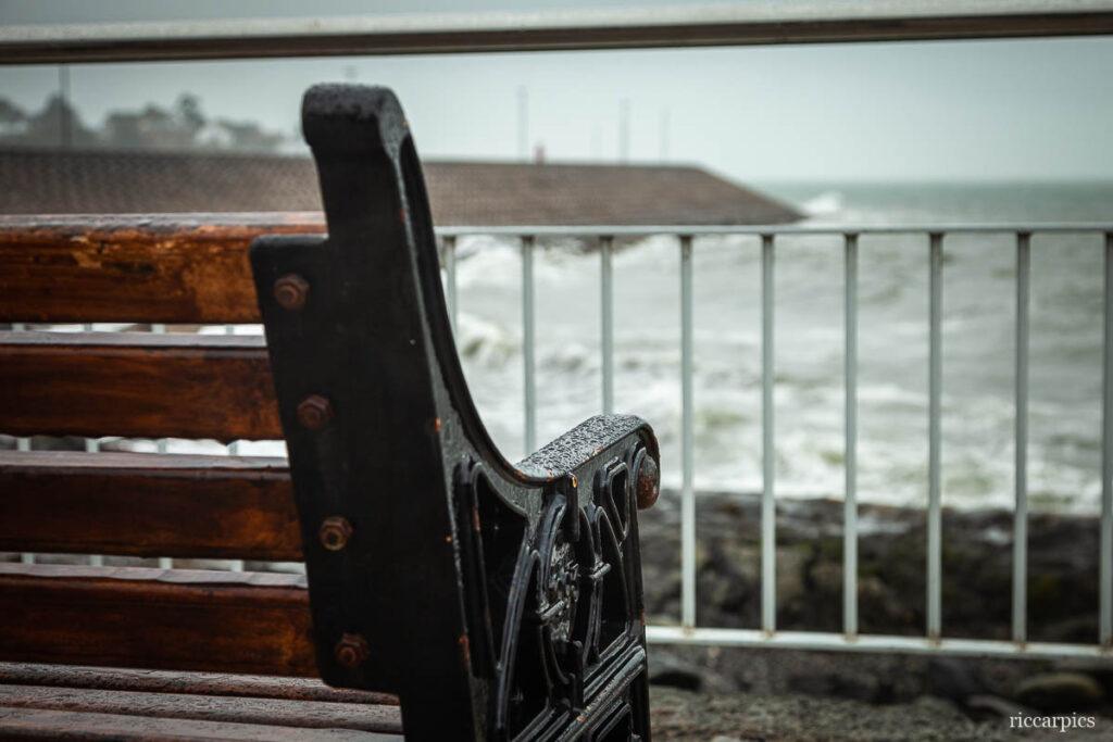 Seat in the rain